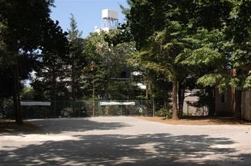 Oyakushi3_1