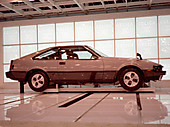 1981tms1