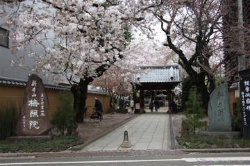 150404yakushi1