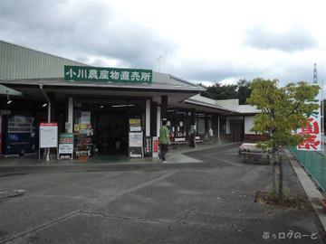 150823ogawa21