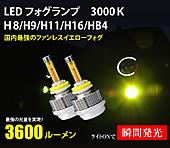 Reiz_led3000kfog_1r