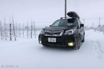 190102_1st_snow02