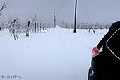 190102_1st_snow04