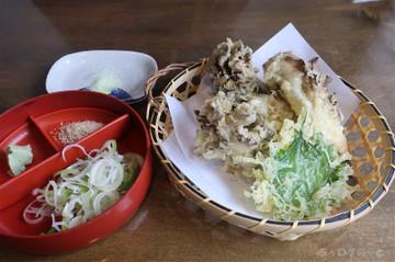 190208_2tomizawa04