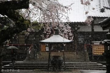 200329yakushi01
