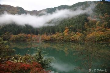 201108okutamako02