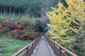 201115akikawa06