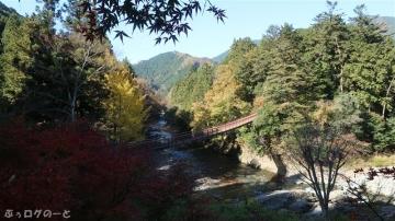 201115akikawa07
