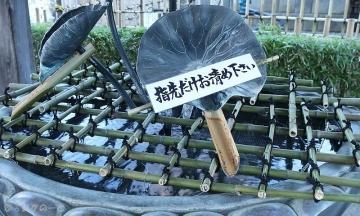 201231yakushi03